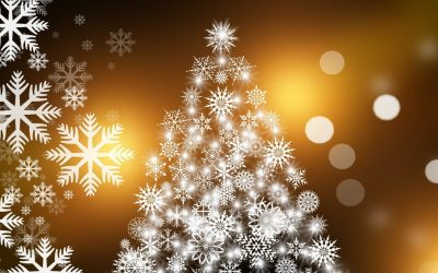 Did you know that every year the Alliance Club puts on a full Christmas dinner and party for the youth of Victoria?